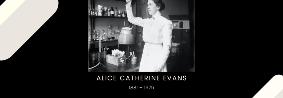 Alice Catherine Evans