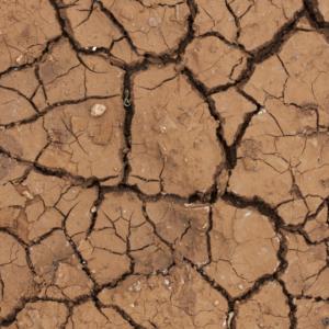 Κλιματική αλλαγή: μήπως η λύση κρύβεται πίσω από το δάκτυλό μας;