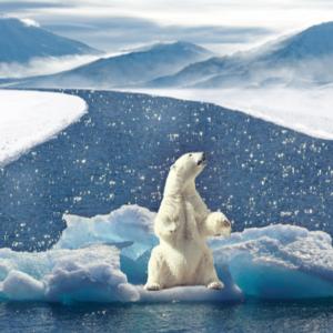 Το κλίμα εκπέμπει SOS